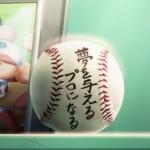 パワプロ2013( 実況パワフルプロ野球2013) トロフィー